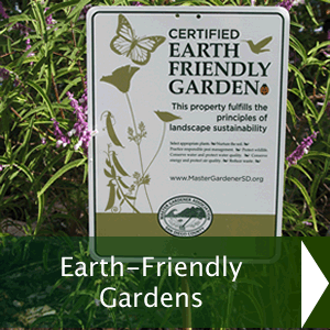 Earth-Friendly Gardens